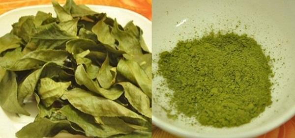 Bột trà xanh Thái Nguyên chất lượng không thua kém hàng Nhật Bản